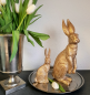 Preview: Hase gold-washed - Florissima
