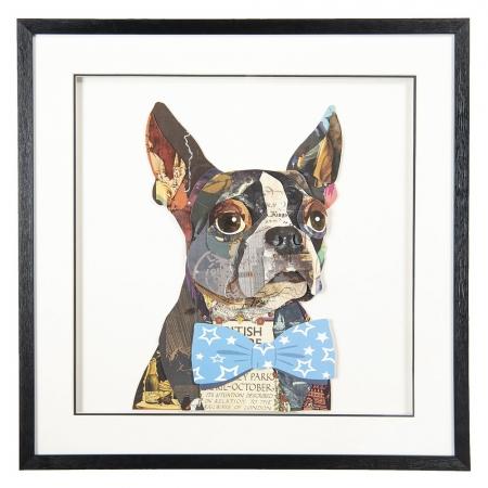 Wandbild Bulldogge